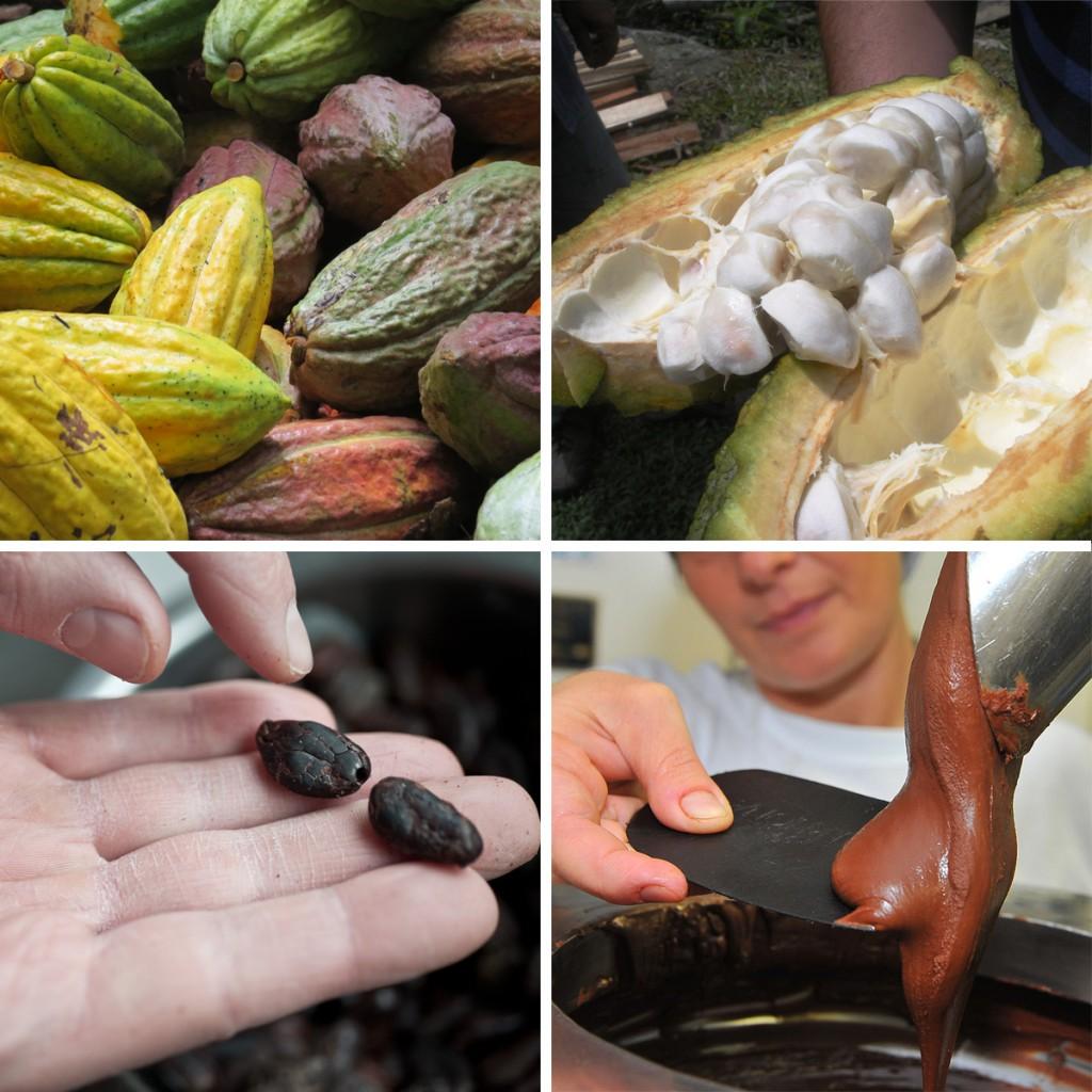 Vuoi diventare assaggiatore di cioccolato?